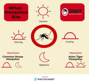 mostcommon biting insects in Florida and why you need mosquito misting systems